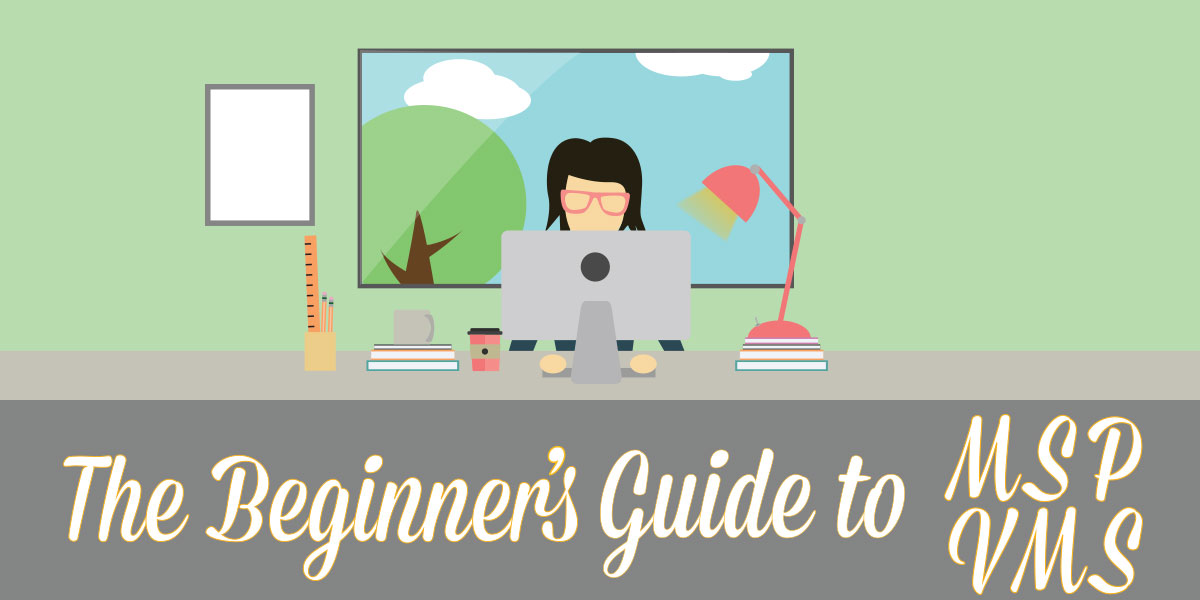 The Beginner's Guide to MSP and VMS Infographic
