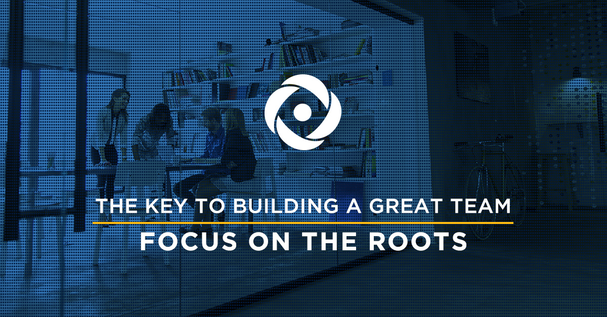 For a Great Team, Focus on the Roots